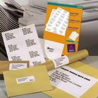 печать наклеек на принтере Intec CP 2020